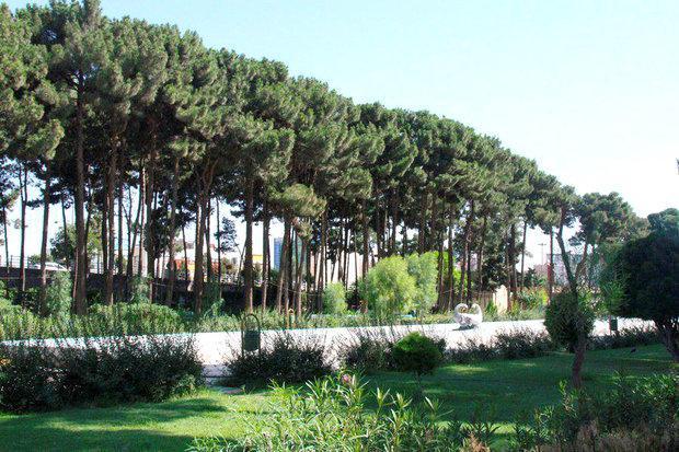 سال جاری 60 هزار متر مربع فضای سبز در سنندج احداث می گردد