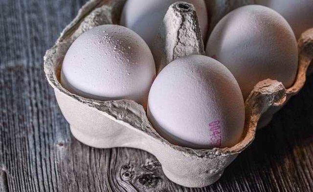 واردات تخم مرغ ترکیه ای در آینده نزدیک