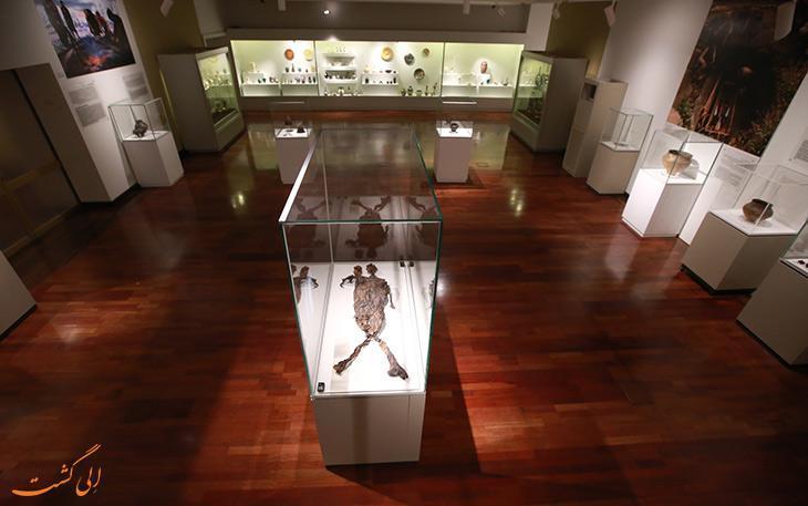 نمایشگاه باستان شناسی هلند در موزه ملی 6 ماه دیگر تمدید شد